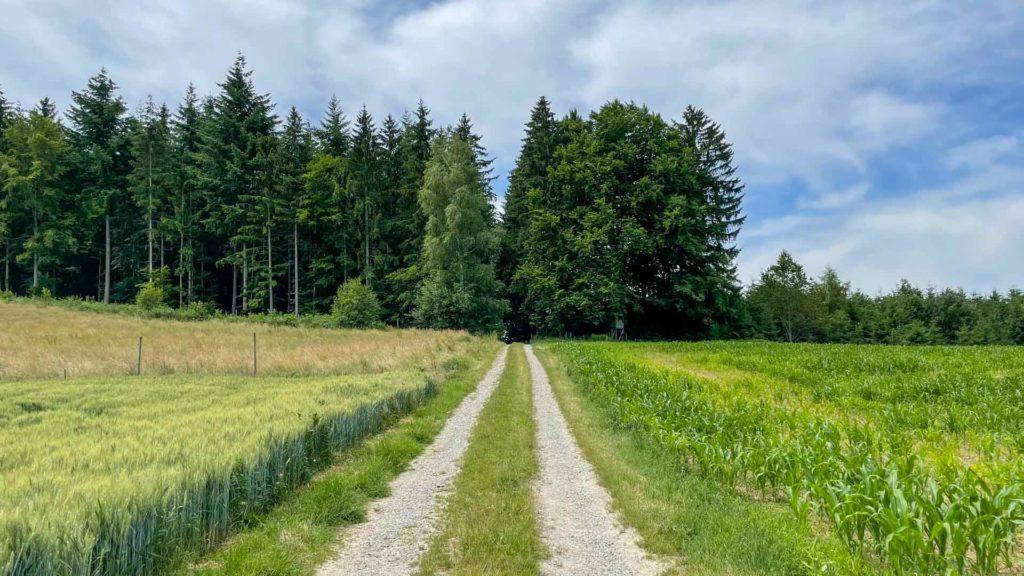 Pfaffenhofener Muehle Owingen Ausflugsziel Lyrikweg Owingen